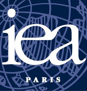 Institut des Affaires Européennes